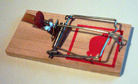 A mousetrap consists of five interacting pieces—the base, the catch, the spring, the hammer and the hold-down bar.