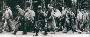 Inmates from Dachau during a death march